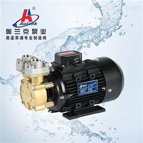 Aulank 热处理体积小高温泵