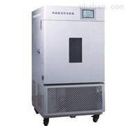 LHH-250GSP型综合药品稳定性试验箱