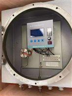 EN-510电化学氧分析仪