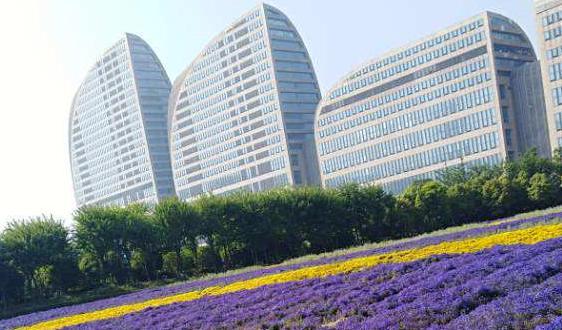 2021年中国铅酸蓄电池行业发展现状与供需分析